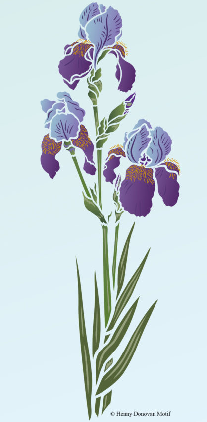Iris-Stencil-2-G1