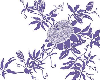 Passion Flower Stencil