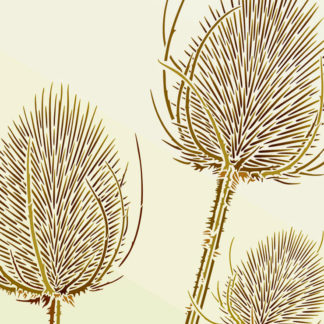 Grasses and Teasel Stencils