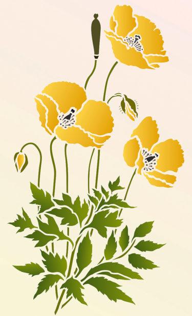 Little-Wild-Poppies-G1