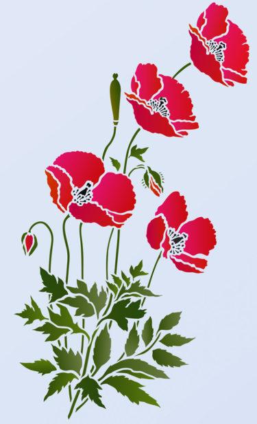 Little-Wild-Poppies-G12