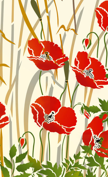 Little-wild-poppies-and-grasses-3